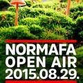 Legyen tánc! (meg ingyenjegy!) Normafa Open Air Susnya Fesztivál