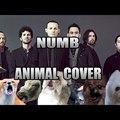 Subba records: Linkin Park - Numb - Vonyítós rework