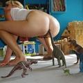 Subba Másnap: DinoszaRurusz