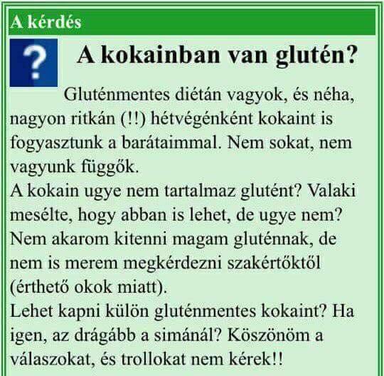 glutn.jpg