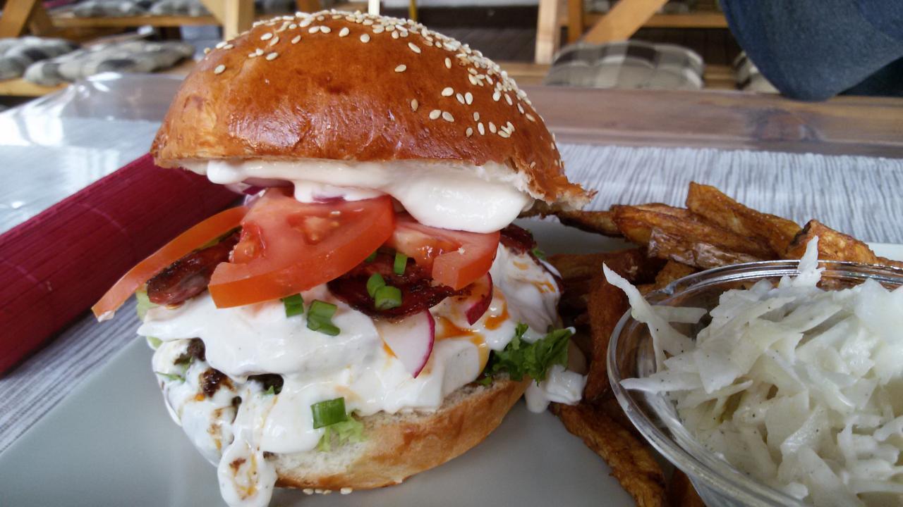 h_sv_ti_burger.png