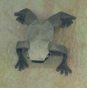 Frog_s.jpg
