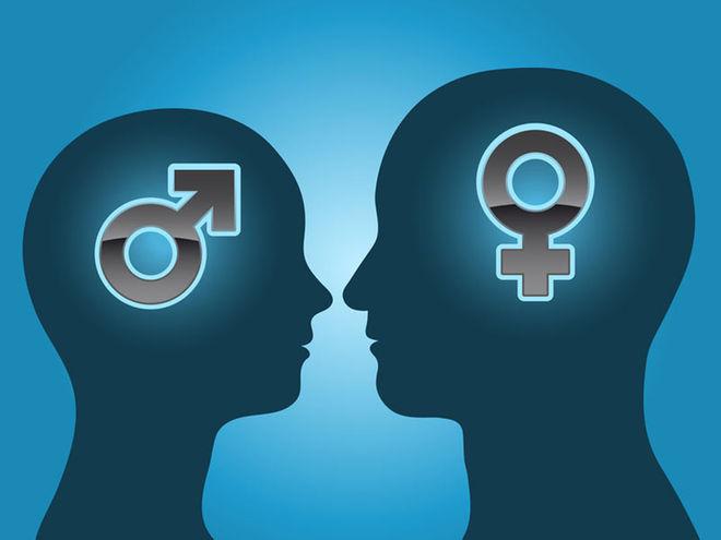 male-female-brain.jpg