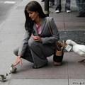 Vigyázni kell a kacsákkal, a kép is mutatja....