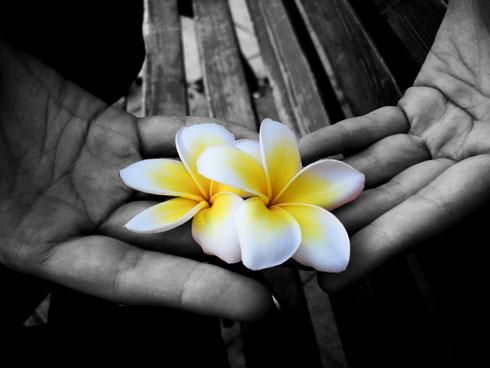 Flowers_hands.jpg