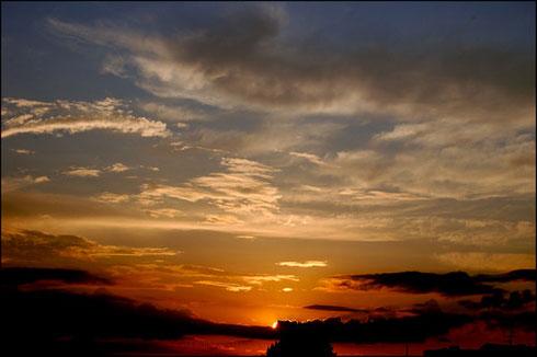 hajnal_02.jpg