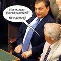 Orbán Viktor is azzal szavaz