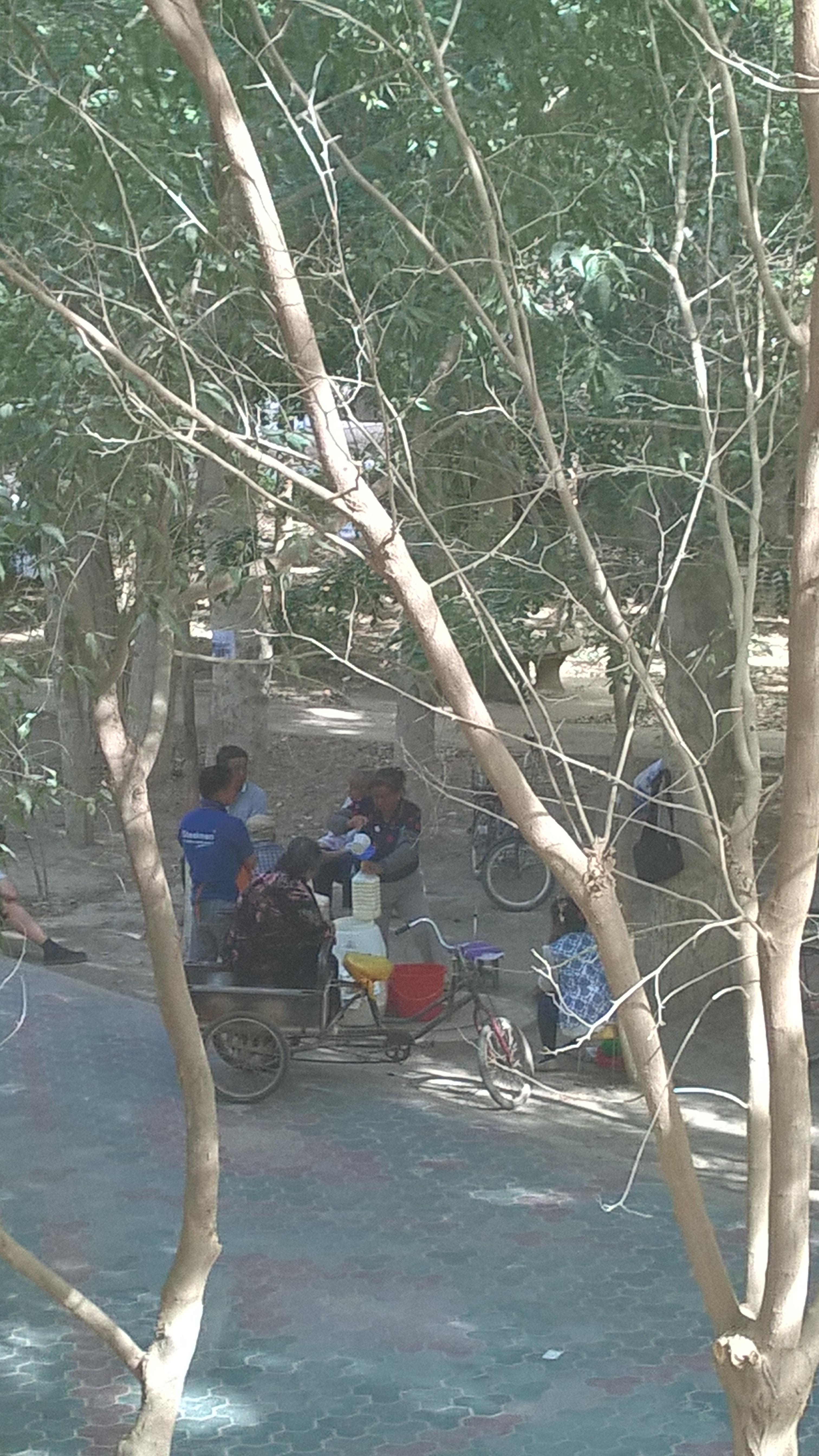 Házitejet mindenfelé kapni. Az ala'eri egyetem kampuszán, a házunk mögött is minden nap kinn egy hölgy.