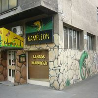 Kaméleon - Átalakult új neve Dominó Éltelbár