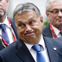 Mit tegyen egy magyar konzervatív, ha nem fideszes?