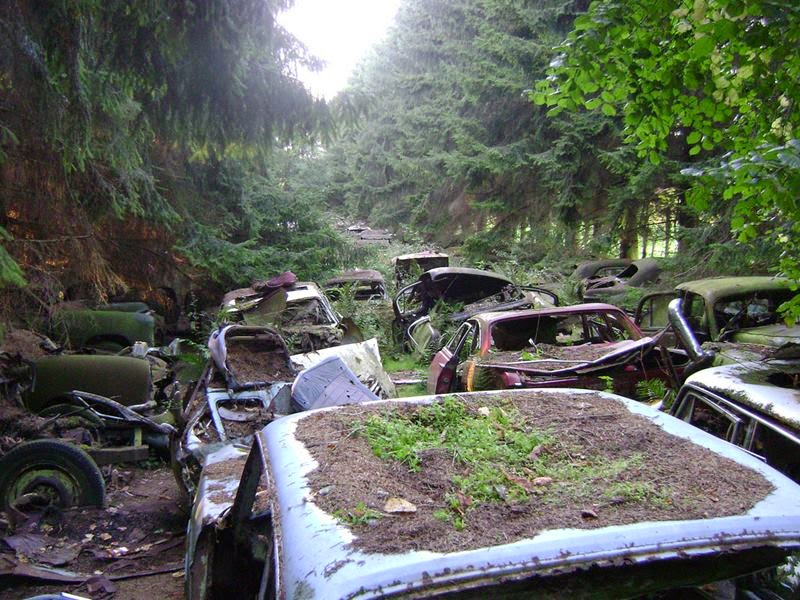 chatillon_car_graveyard_belgium_ritebook_in-001.jpg