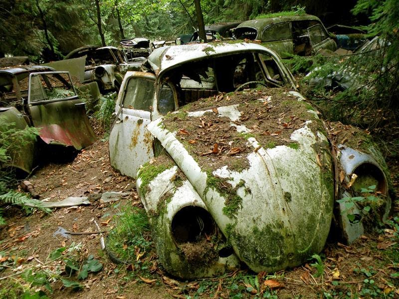 chatillon_car_graveyard_belgium_ritebook_in-002.jpg