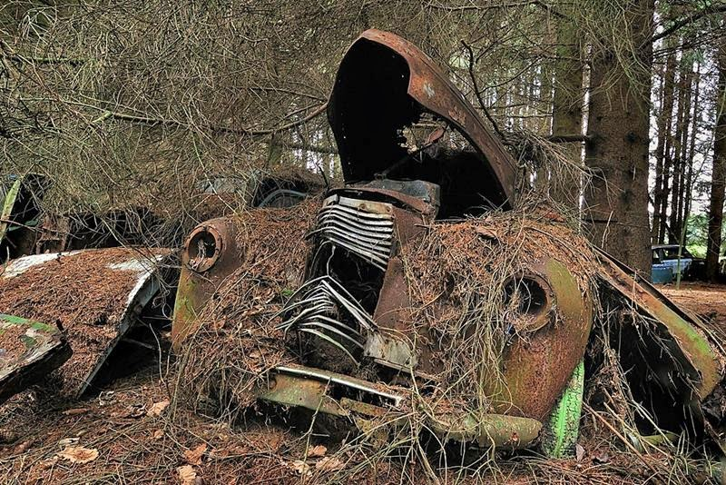 chatillon_car_graveyard_belgium_ritebook_in-006.jpg
