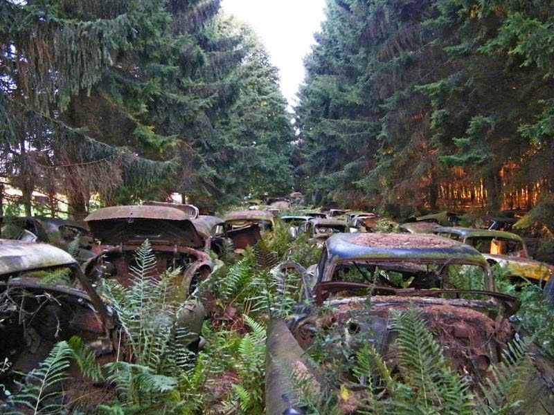 chatillon_car_graveyard_belgium_ritebook_in-011.jpg