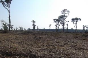 A Felső-Dunamellék környezetvédelme