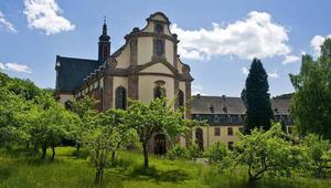 Paphiány sújtja Németországot is