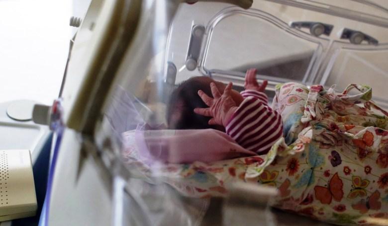 inkubator2.jpg