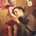 Páduai Szent Antal hitvalló és egyháztanító