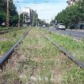 Egyedi módszerrel lesz zöld a villamospálya Újbudán