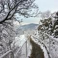 Budapest legszebb túrája, 2. rész: Az ezer lépcső útja