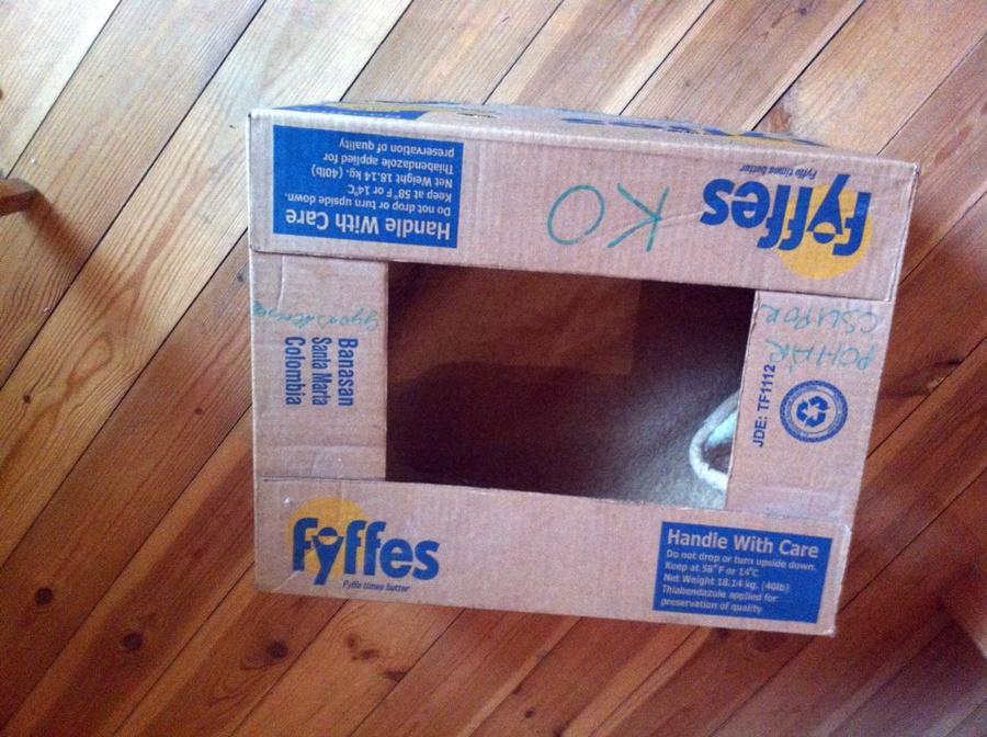 3. lépés: Tedd a dobozba a takarót!
