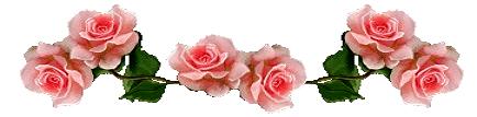 barra_rosas1.jpg