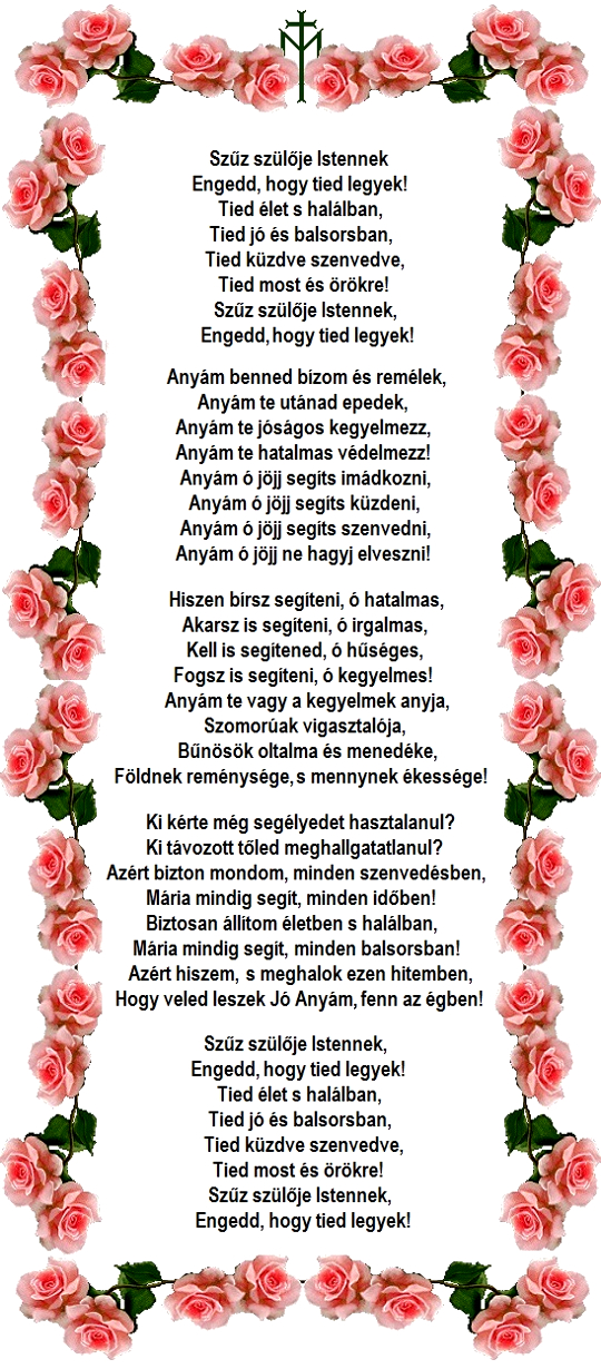 barra_rosas_540.jpg