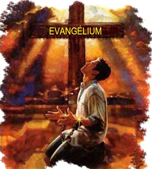 evangelium_81_530.jpg