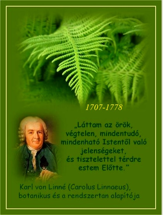 karl_von_linne_1.JPG