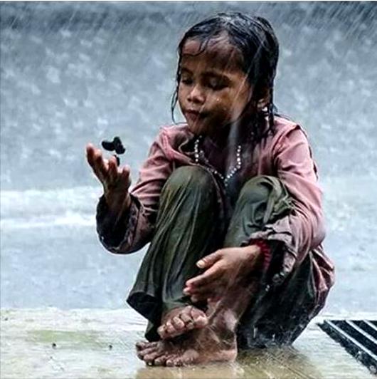 rain_1_orig_530.jpg