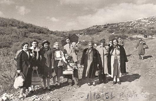 zpilgrims_1951_530.jpg
