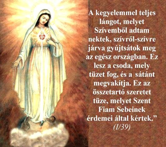 034a_szeplotelen_sziv_oltalma_006_530.jpg