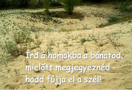 113ird_homokba_530.jpg