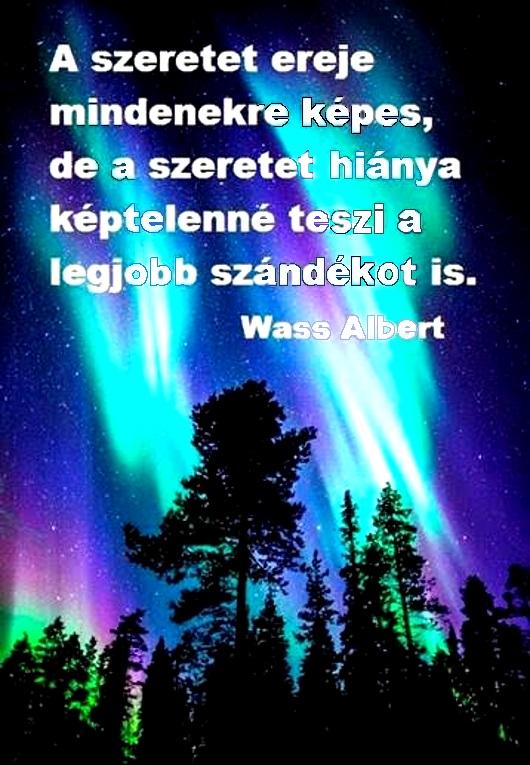 136wass_530.jpg