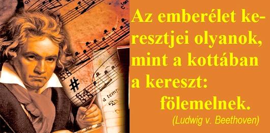 144az_emberelet_keresztjei_530_1.jpg
