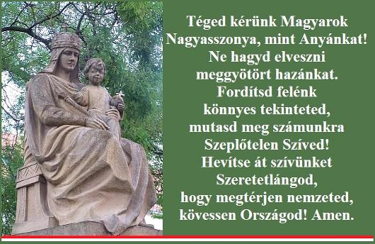 204teged_kerunk_530.jpg