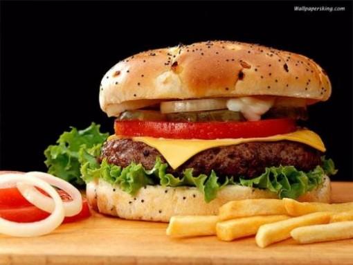 hamburger 1.jpg