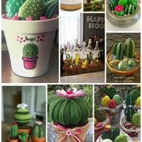 Kreatív kaktuszok