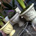 Vintage stílusú tavaszi kaspók