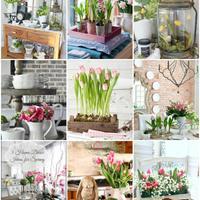Otthonszépítő ötletek tavaszra