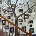 Lélegzetelállító családfa a falon