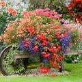 Újrahasznosítás a kertben: 30 zseniális ültetési öltet