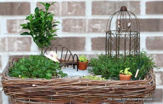 miniature garden 2 (7).JPG