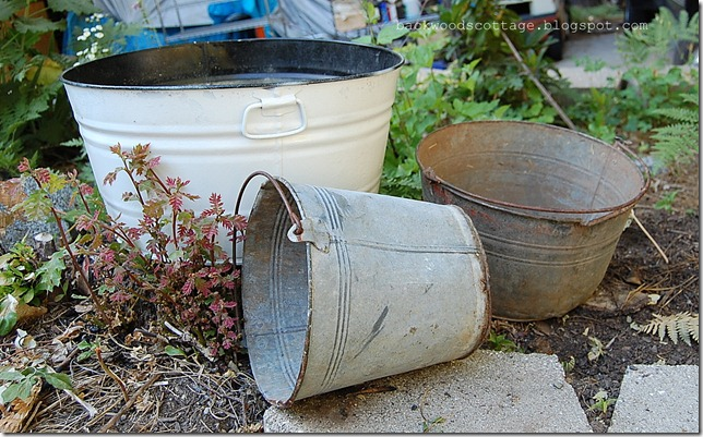 buckets2_thumb[1].jpg