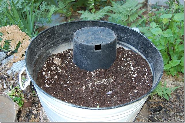 buckets6_thumb[1].jpg
