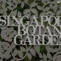 Botanikus-kert és a mi kis büszkeségünk