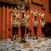 Arany Medál – Egy díj, amit a közönség ítél oda