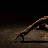 Kinőtt szív - Flamenco az elvesztésről