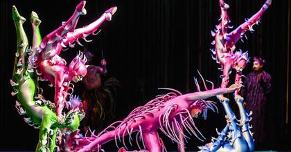 Harminchárom ezer munkaóra van a Cirque du Soleil show jelmezeiben