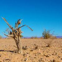 A nagy klímaváltozás-teszt
